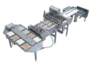 CEM 216 egg breaking machine4